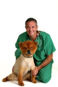 dog cancer